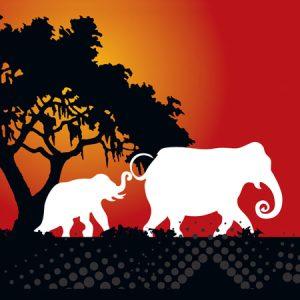 Creative-Musings - elephants